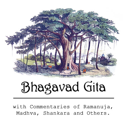 essay on bhagavad gita in sanskrit Free essay: the bhagavad gita as translated by juan mascaro is a poem based on ancient sanskrit literature contained in eighteen chapters the period of.