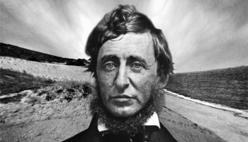 a comparison of henry david thoreau Martin luther king jr, mahatma ghandi and henry david thoreau all advocated for civil disobedience through non-violent means also, each of these individuals was, at.